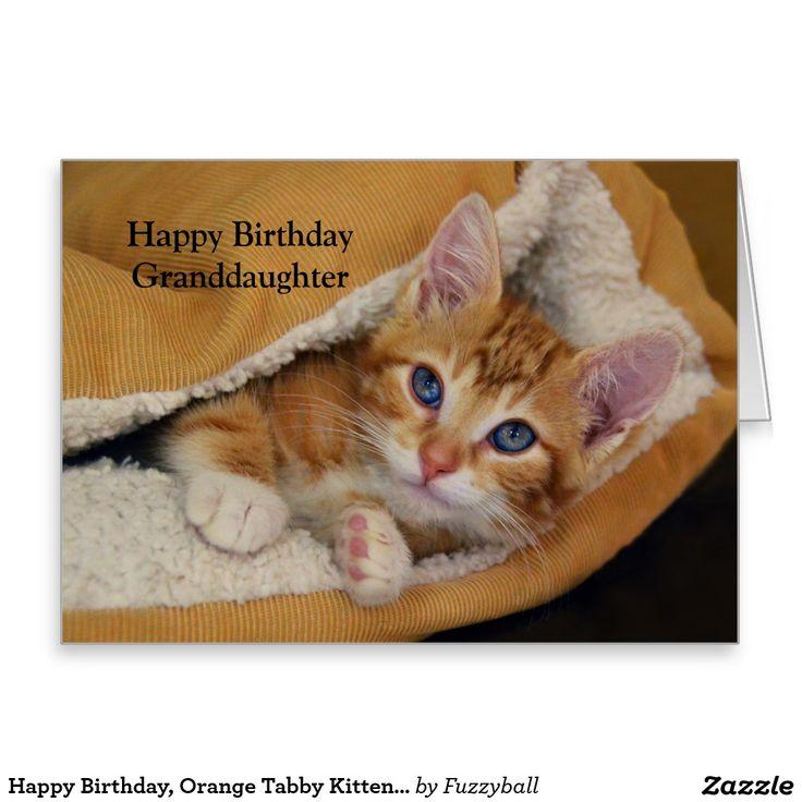 Birthday Orange Cat: 17 Best Images About Zazzle On Pinterest