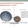 Ecological Systems Theory and Practice