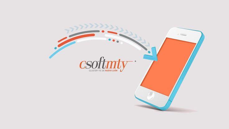 CSOFTMTY IDs