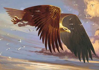 The legendary bird, Roc