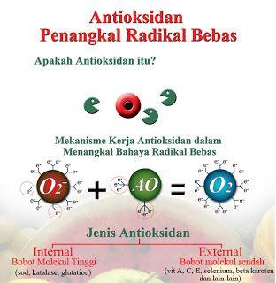 mengenal antioksidan dan manfaatnya untuk tubuh manusia