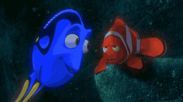 Finding Nemo D Animasi Hd Wallpaper: Best 25+ Gill Finding Nemo Ideas That You Will Like On