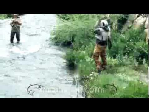 """Clic & Fish - Un vídeo breve sobre el """"Quiénes somos"""" ¡Conócenos!"""