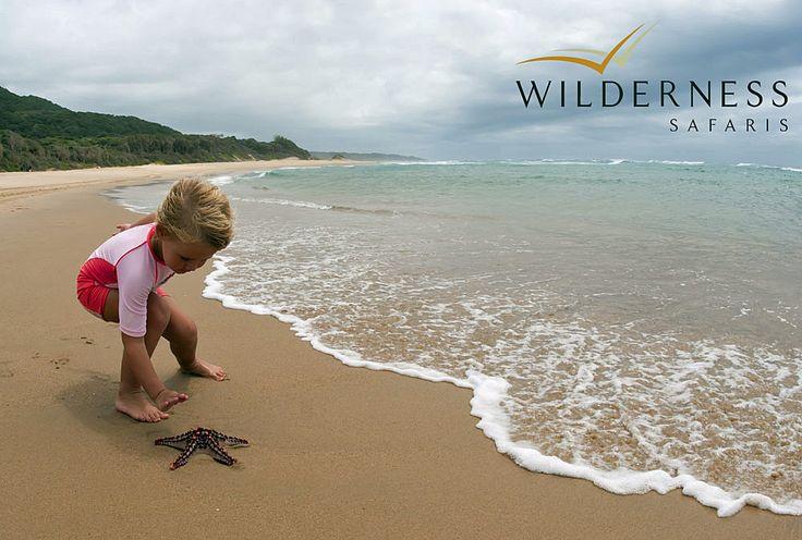 Rocktail Beach Camp - Pristine beaches... #Tropical #Safari #Africa #SouthAfrica #WildernessSafaris