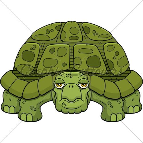 tortoise drawing for pinterest - photo #12