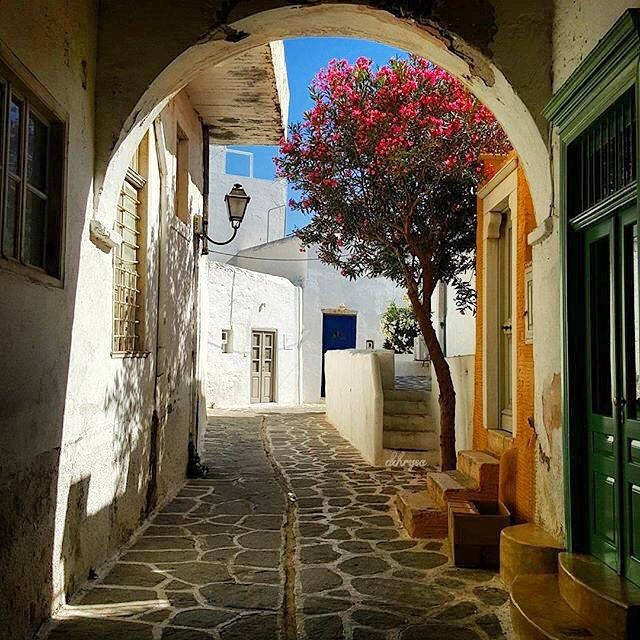 Beautiful Cycladic style alley , at Paros island (Πάρος)❤️. In this island you can find wonderful beaches with crystal-clear waters and pretty villages !