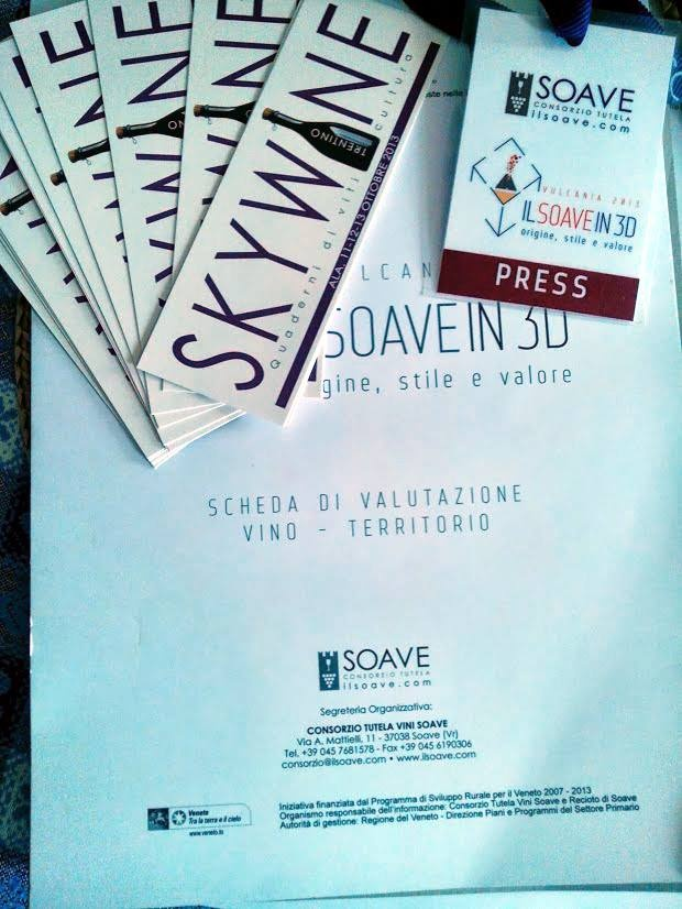 SKYWINE.2013 - SOAVE IN 3D