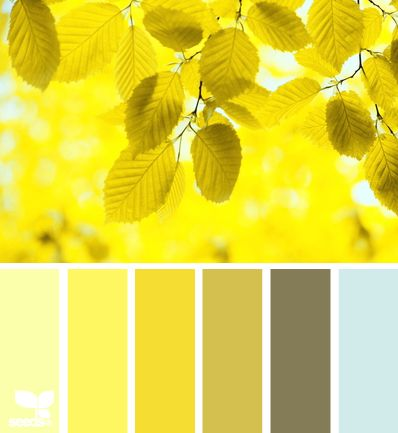 Yellow Leaves - http://design-seeds.com/index.php/home/entry/yellow-leaves