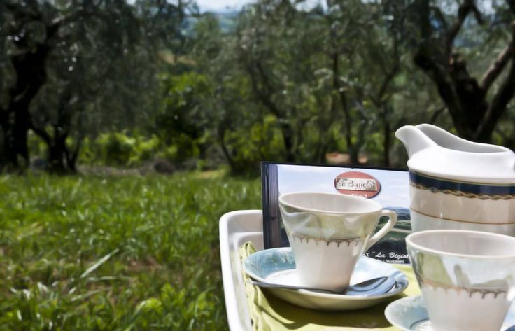 do you want to have your breakfast time in front of our olives garden ?