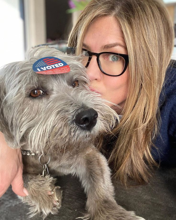 Park Art My WordPress Blog_When Is The Illinois Primary 2020 Early Voting