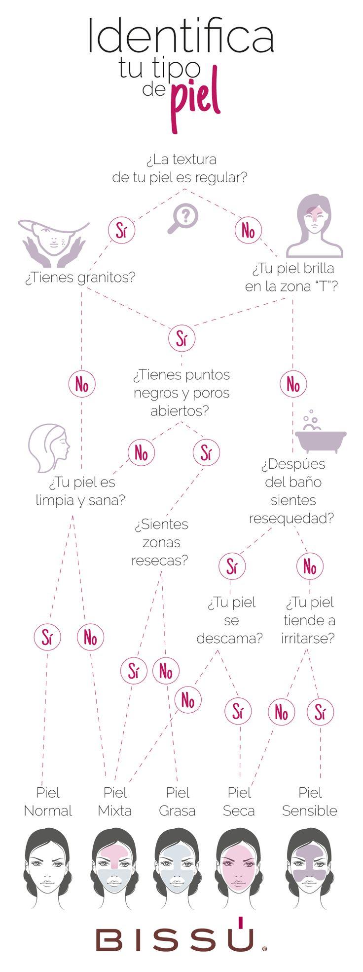 Con la ayuda de este diagrama conoce tu tipo de piel. http://tiendaweb.bissu.com/