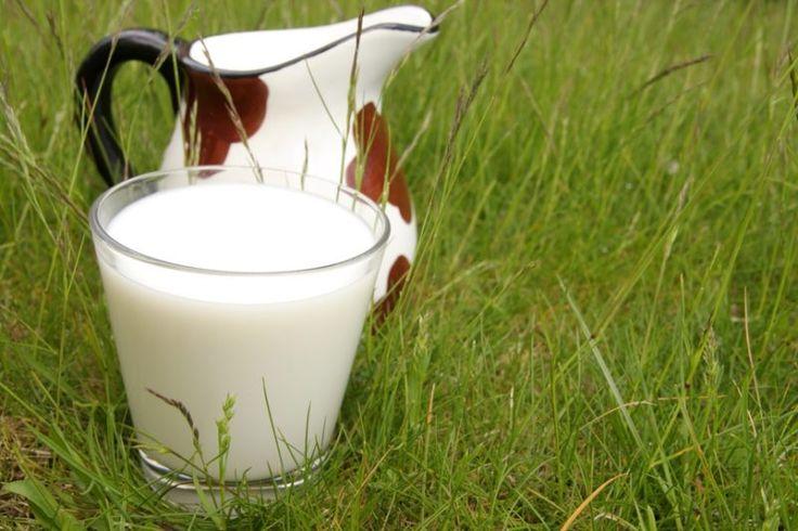 В Україні можуть відмовитися від виробництва молока другого сорту