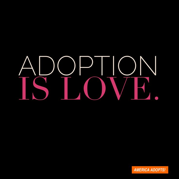 Adoption is love.
