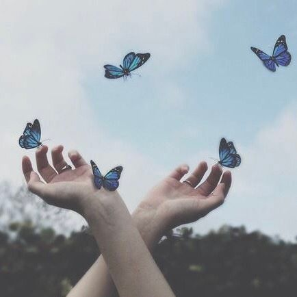 Magic Great Tagged with beauty blue butterfly cute green grunge hands magic photo sensitive simple sky Blue Aesthetic Pastel, Aesthetic Colors, Aesthetic Vintage, Aesthetic Photo, Aesthetic Pictures, Blue Aesthetic Tumblr, Fae Aesthetic, Photo Bleu, Harry Potter Aesthetic