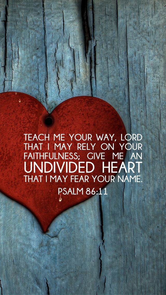 Psalm 86:11                                                                                                                                                      More
