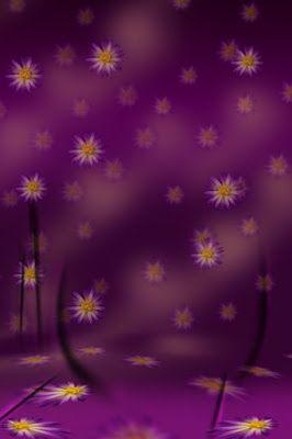 20 Studio Background 8x12 Hd Images 2017 Studio Background
