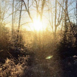 A frosty sunrise as viewed from the window of our cabin. Doesn't get prettier than that.