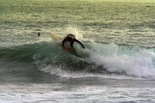 Surf #surf #beach #summer #waves #board #sport #photo