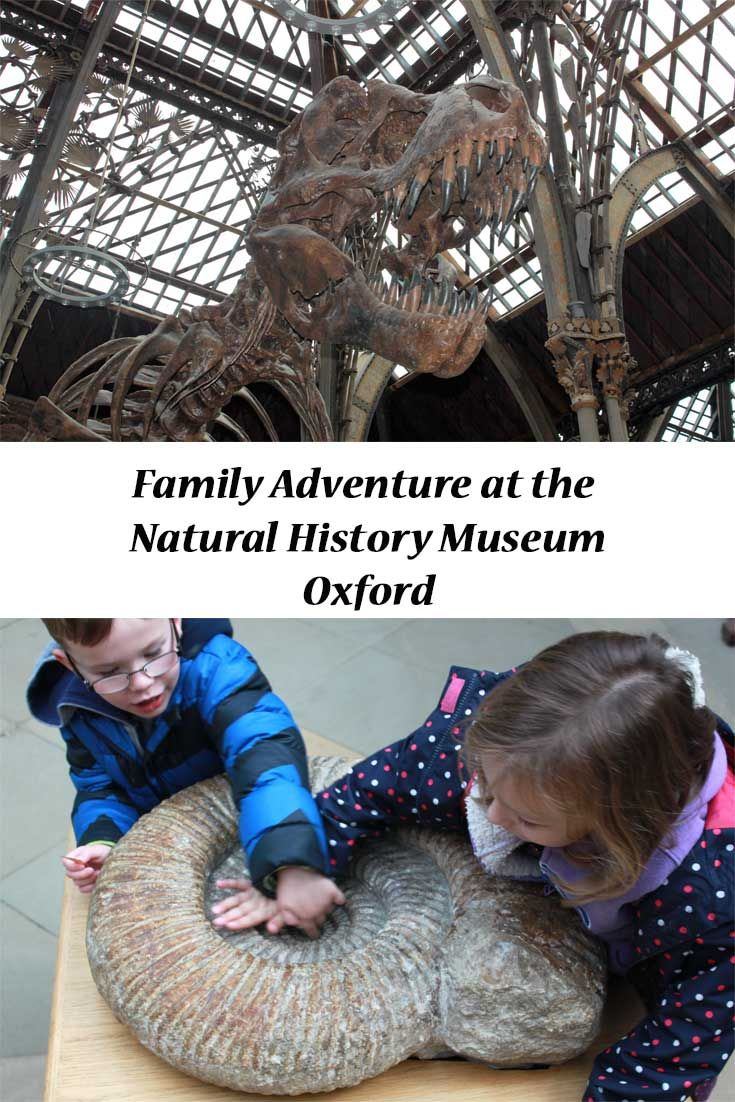 Family Adventures in search of dinosaurs.