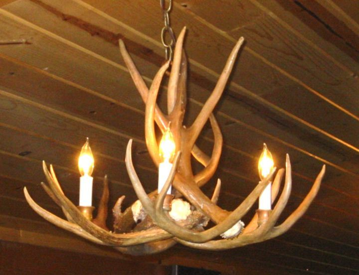 12 best how to fit the fantastic antler chandelier into various room antler chandelier for room aloadofball Images