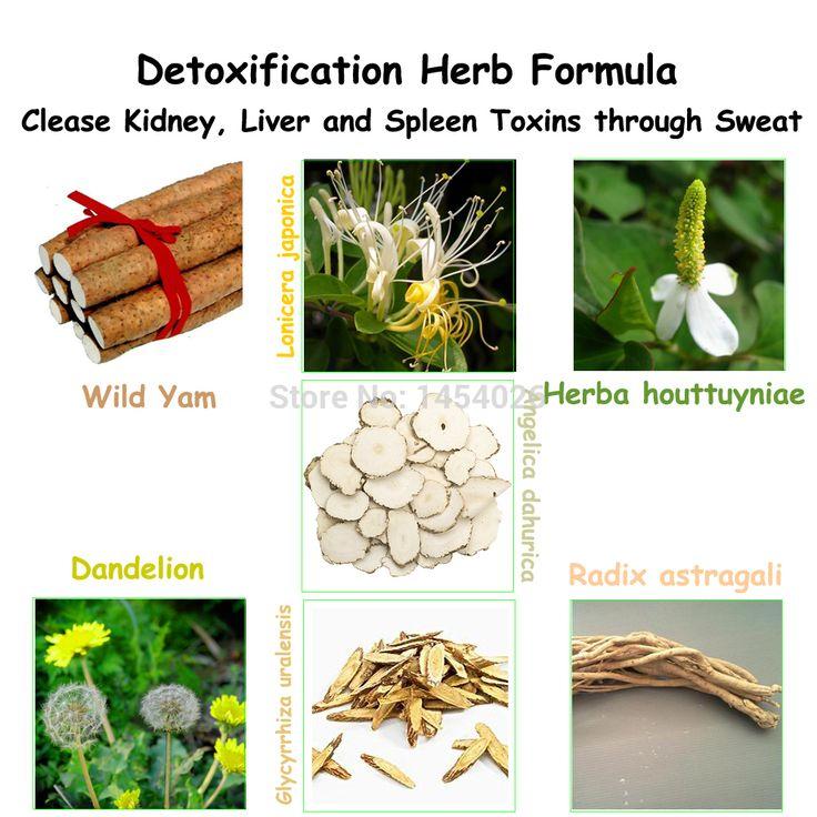 Tradycyjny Chiński Lek Herb Formuła dla Oczyszczenia Nerek, wątroby i Śledziony Toksyn Poprzez Pocenie