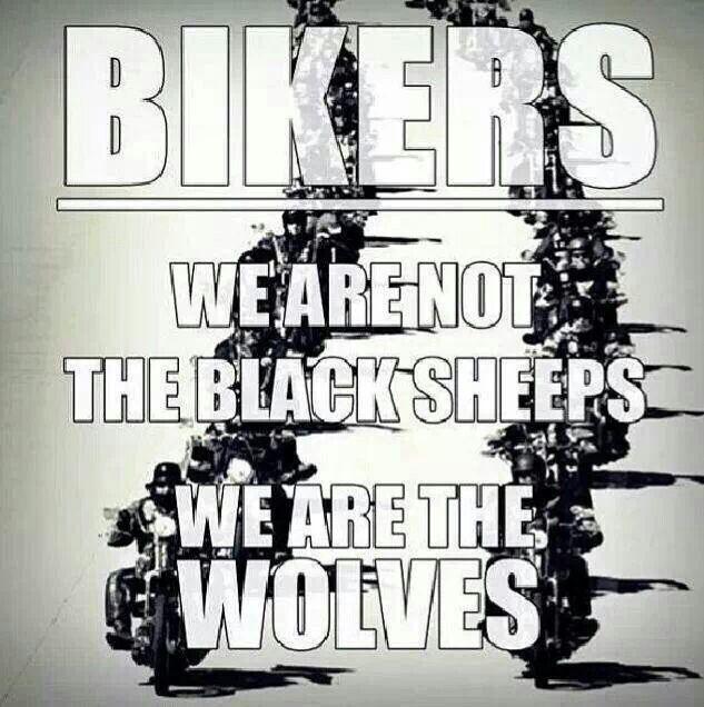 """Bikers, no somos las ovejas negras, somos los lobos"" ✌️ excelente martes a tutti la Banda!!   Have a kickass Tuesday, Gang! #MartesBiker #NotTheBlackSheep #OvejaNegra #DisturbedCulture #DisturbedTendencies"