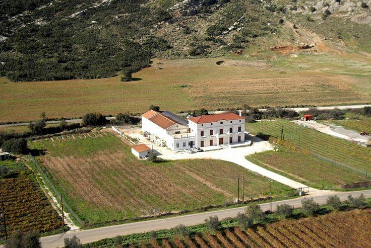Lantides Esate http://nemeawineland.com/lantides-estate