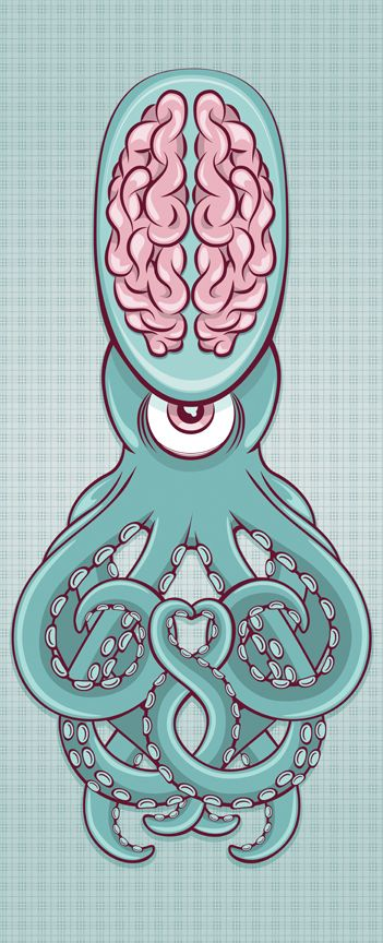 Bordo Bello 2011 by Tiffany Huisenga, via Behance