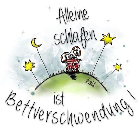 """#Alleine #schlafen ist #Bettverschwendung !!!  Was meint ihr !? #gutenmorgen #morning #bett #alone #spruchdestages #sotrue  Kommt alle gut in die neue """"kurze"""" Woche ☀️⬆️✅ ☺️✌️"""