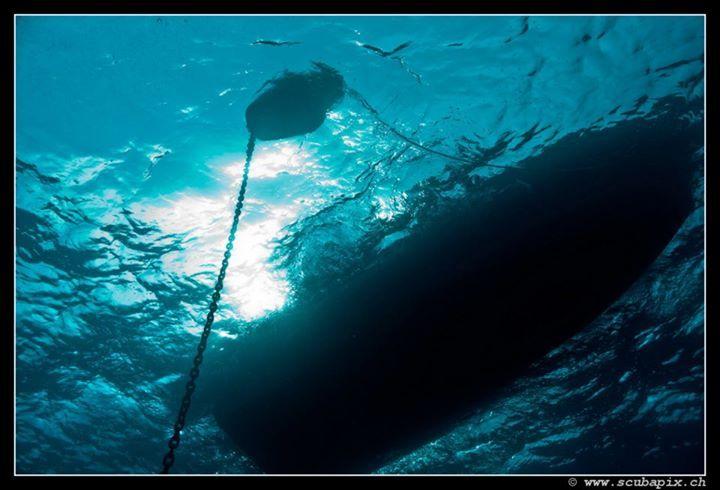 Diving Club ecosostenibile LiguriaMoonlight Sub Italia
