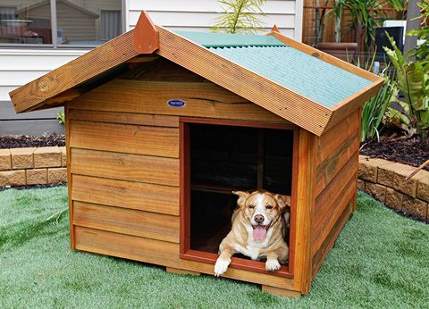 Aarons Outdoor Living - Large Dog Kennel, $350 (http://www.aaronsoutdoor.com.au/pet-houses/large-dog-kennel/)