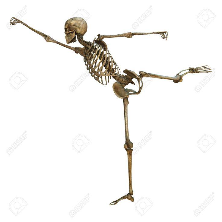 34030845-Digitale-3D-rendering-di-uno-scheletro-umano-in-una-posizione-di-arti-marziali-giogo-pugno-isolato-s-Archivio-Fotografico.jpg (1300×1300)