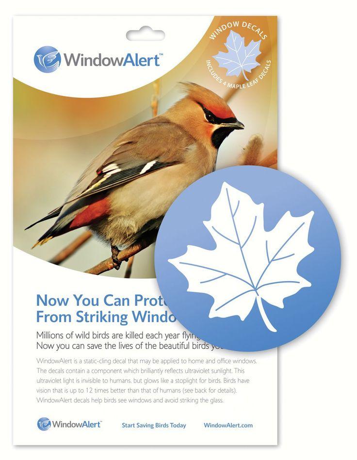 Keep Birds Safe With Window Alerts Window Decals Leaf Window - Invisible window decals for birds