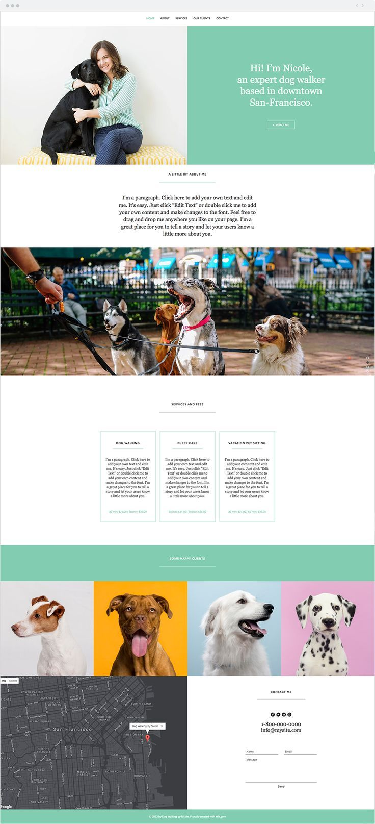 Dog Walker Website Template Wix