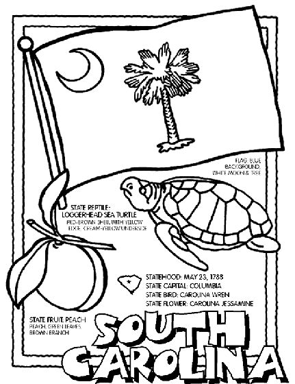251 best usa coloring pages images on pinterest coloring book south carolina state symbol coloring page by crayola print or color online sciox Image collections