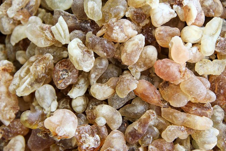 Frankincense Oil: A Natural Treatment for Cancer? by Dr. Josh Axe and Eric Zielinski