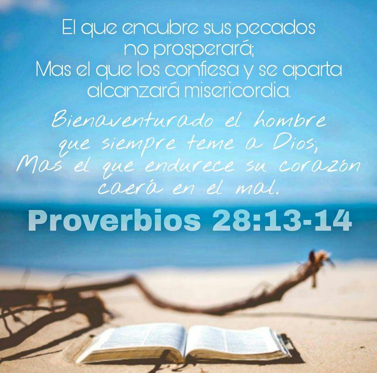 Proverbios 28:13-14
