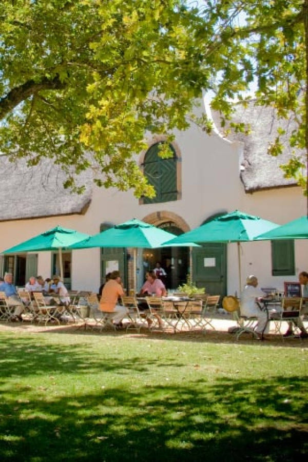 Great Spot for Picnics and a Delicious Menu for all at Jonkershuis, Groot Constantia, Cape Town