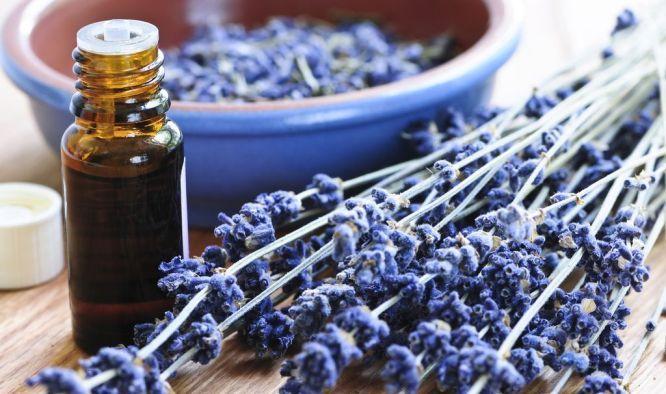 L'olio essenziale di lavanda è da sempre famoso per il potere calmante e rilassante sul sistema nervoso. Ecco come usarlo per dimenticare l'insonnia