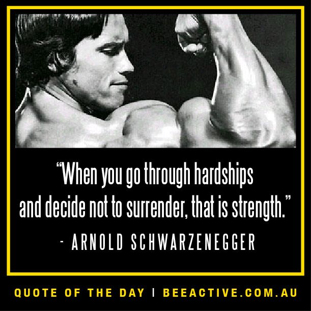 the life and careers of arnold schwarzenegger Arnold schwarzenegger is an austrian-born american actor, bodybuilder and former politician he was once part of the planet hollywood trio with stallone and bruce willis.