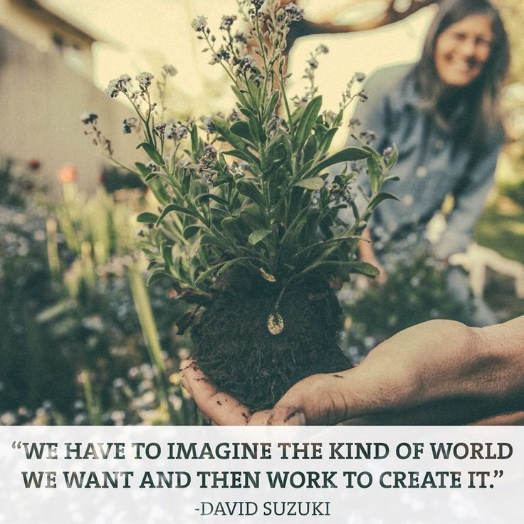 """We have to imagine the kind of world we want and then work to create it."" ~ David Suzuki"