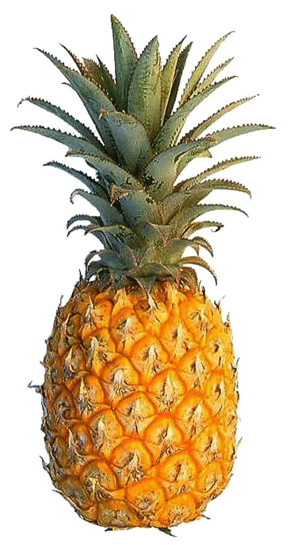 pineapple-06