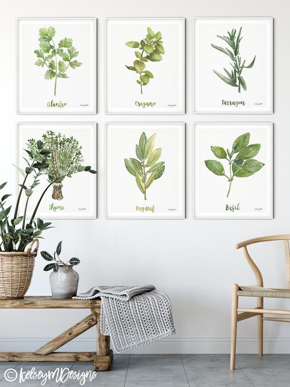Watercolor Print Herbs Collection Set Of 6 Prints Herb Watercolor