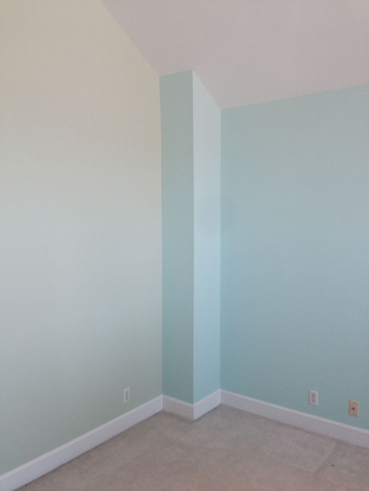 Sherwin Williams Sea Salt Bathroom Accent Wall And Accent