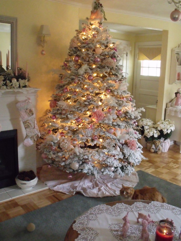 Christmas Tree Salem New Hampshire