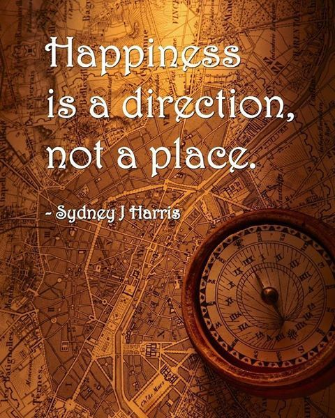 This is sooo true!! Being without direction steals joy... #happiness #direction #joy #keepgoing #happyplace #whatmakesyouhappy #motivation #life #onyourknees #focus #plan #planning #whatmatters #heart #soul #human #passion #embrace