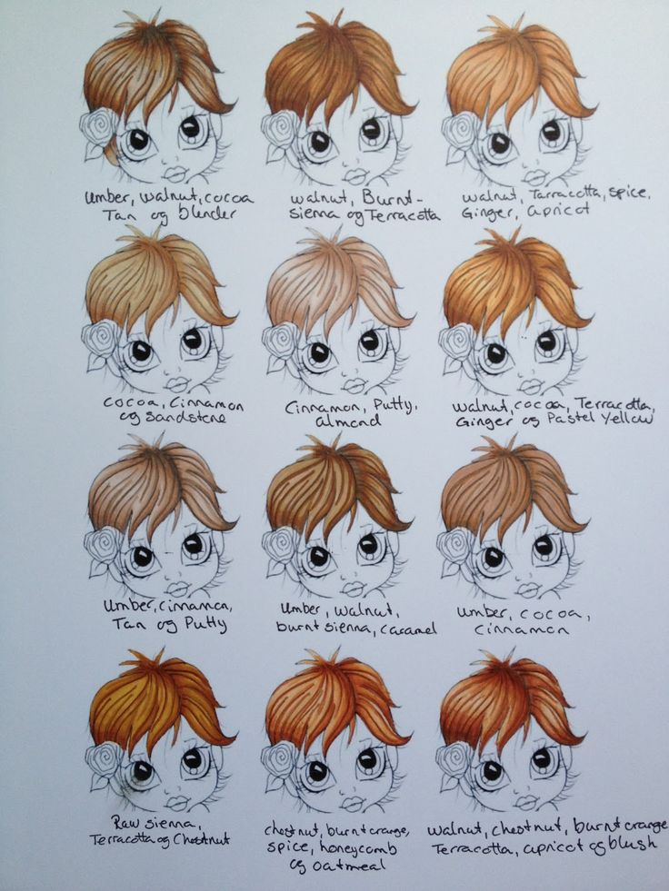 Promarker hair colours