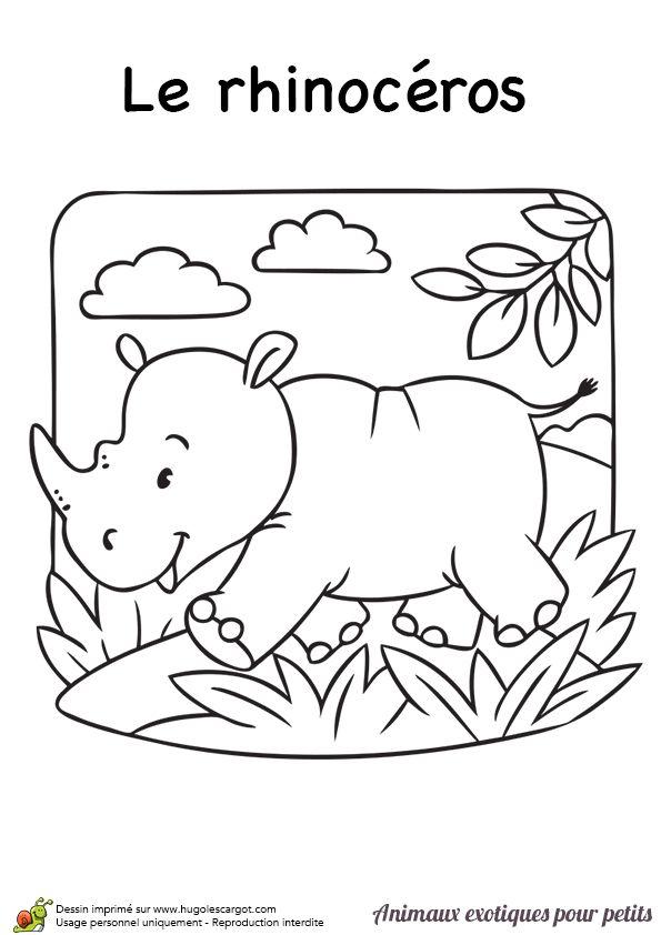 tu peux colorier ce joyeux petit rhinocéros pour qu'il puisse se balader dans la jungle
