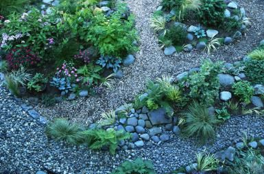 Rock Garden Design: 10 Common Questions Answered: A lot goes into picking suitable plants to grow in a rock garden.