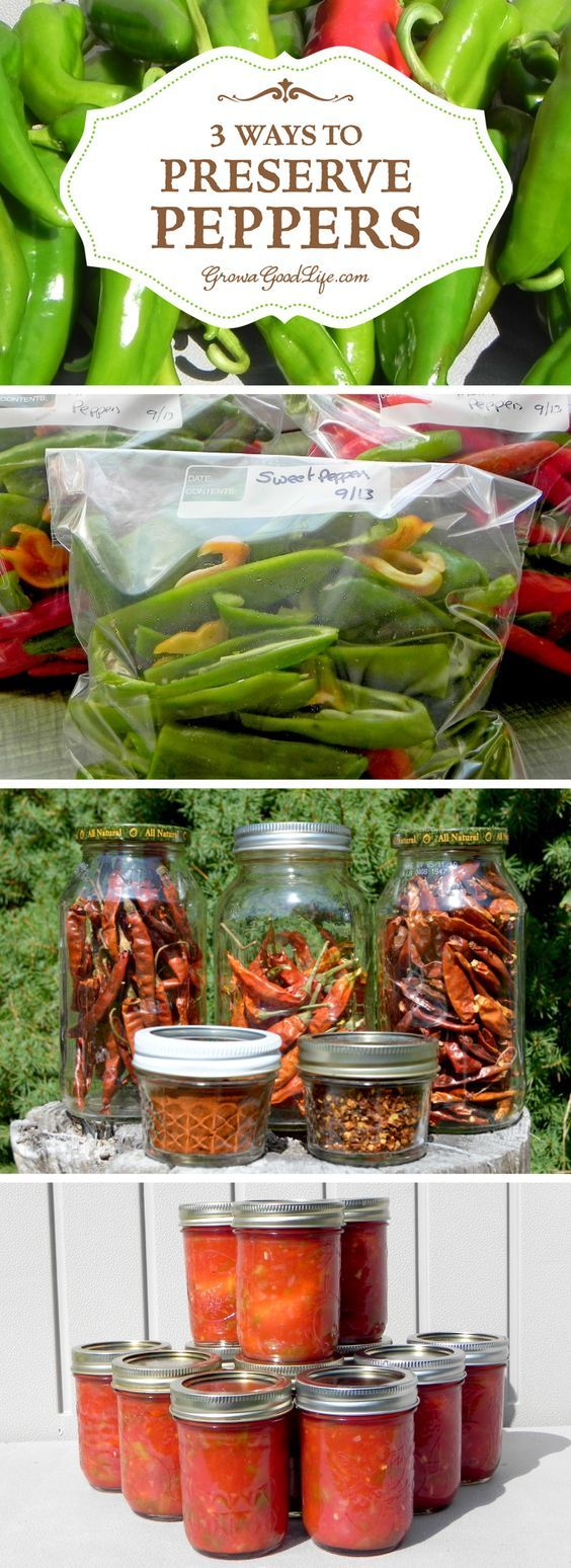 If you don't grow your own peppers, consider purchasing in bulk from local growers at your farmer€™s market when in season and preserve peppers to enjoy all year.